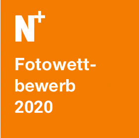 Fotowettbewerb 2020 der Bürgerstiftung Neukölln