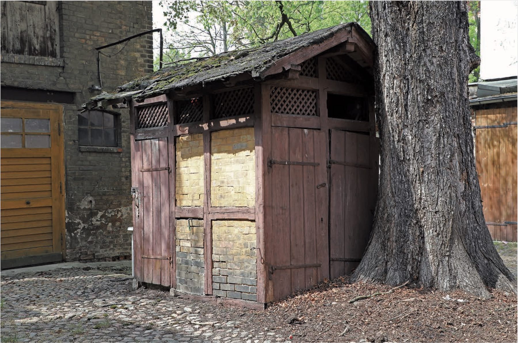 Auf einem gepflasterten Hof steht ein baufälliges Häuschen mit Fachwerk und Holztüren dicht an einem dicken Baumstamm